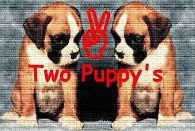 Two Puppy's Logo