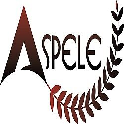 Aspele Shoes