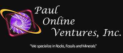 Paul Online Ventures Inc