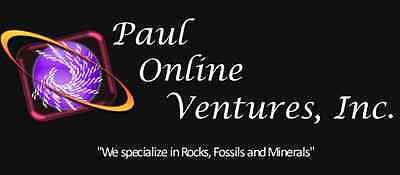 Paul Online Ventures Inc