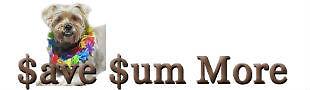 Save Sum More