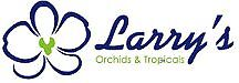 Larry's Orchids and Tropicals
