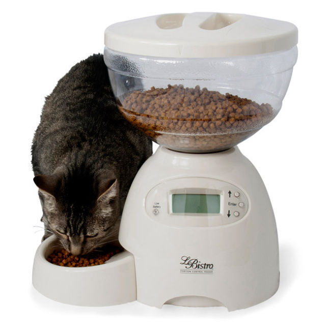 Top 5 Automatic Cat Feeders Ebay