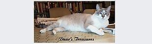Dzur's Treasures
