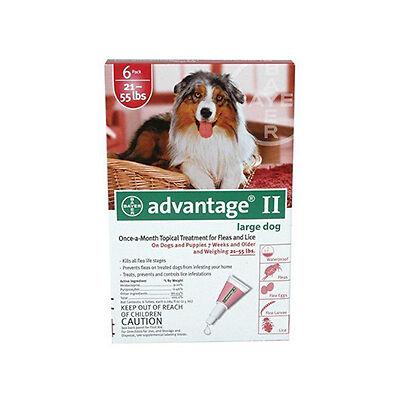 Top 9 Dog Flea And Tick Remedies Ebay