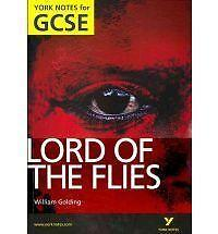 Lord-of-the-Flies-York-Notes-for-GCSE-by-S-W-Foster-NEW-Paperback-Book