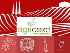 NEIVE: Azienda agricola
