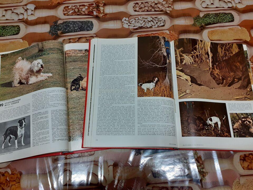 Encicloedia del cane + vhs s.bernardo