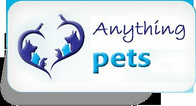 Anything Pets