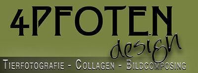 4pfoten-design