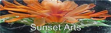 sunset_arts_2