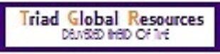 Triad Global Resources