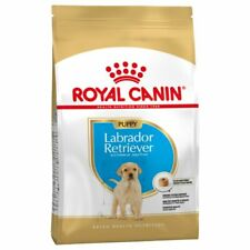 Labrador Retriever Puppy Royal Canin 12 Kg