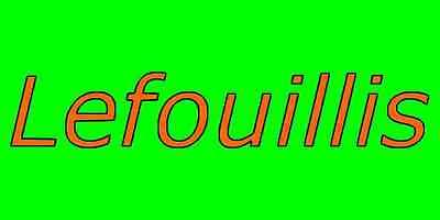 lefouillis