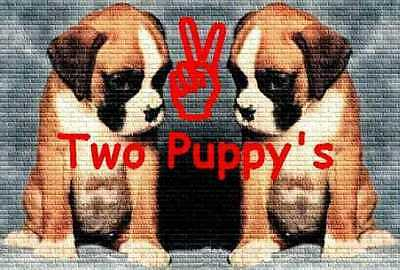 TwoPuppys13