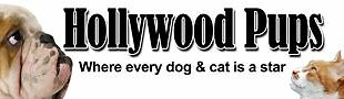 Hollywoodpups