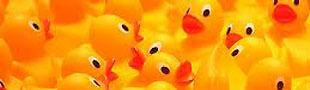 ducksonlycom