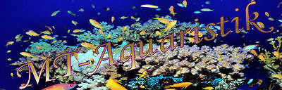 MT-Aquaristik