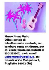 Intrattenimento musicale