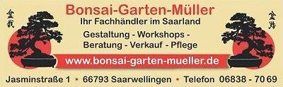 Bonsai-Garten-Mueller
