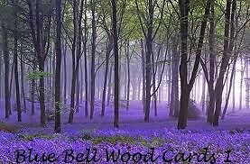 blue bell wood cards1