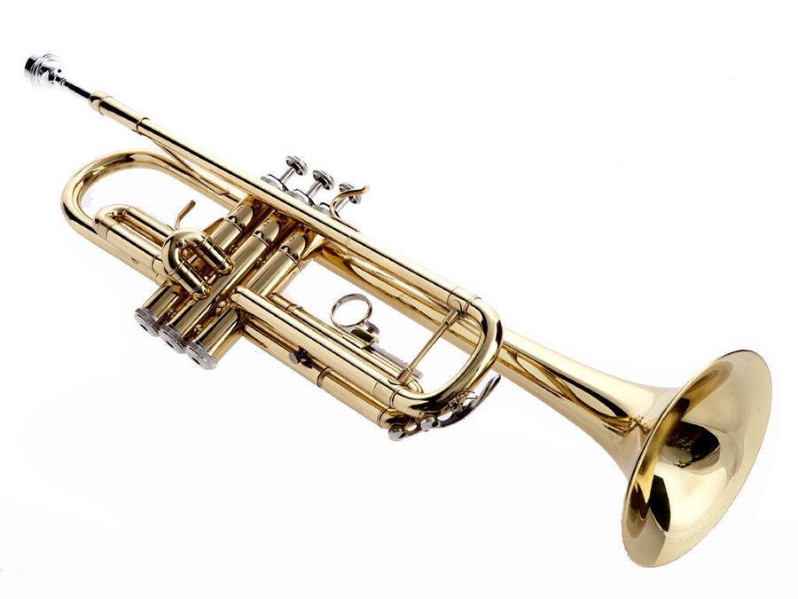 Nützliche Hinweise für den Kauf von Blasinstrumentenzubehör wie Dämpfern