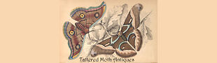 Tattered Moth Antiques & Vintage
