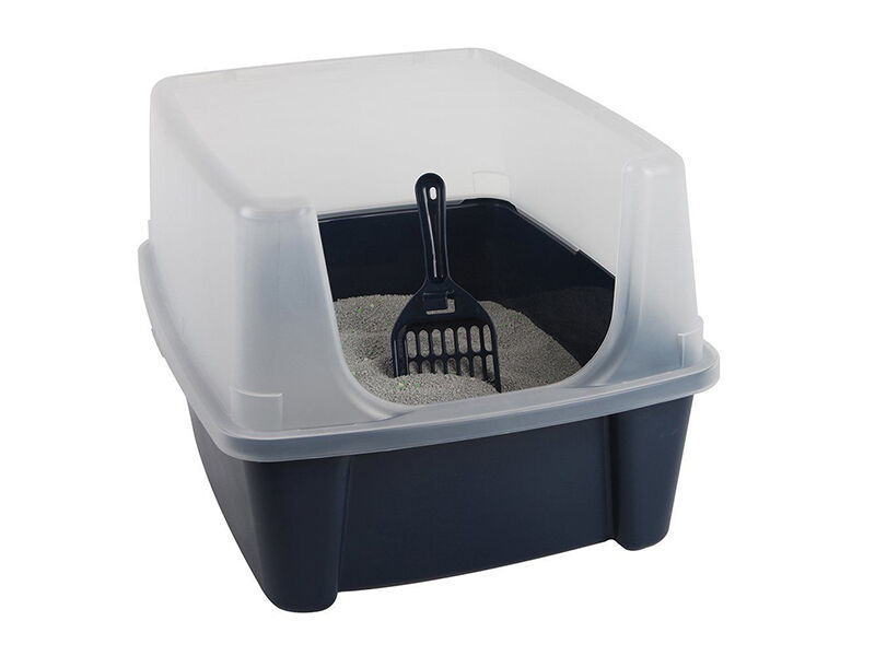 Best Cat Litter Box For Maine Coon Uk