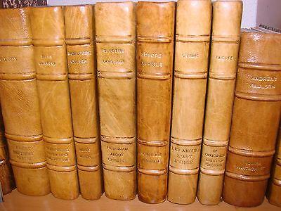 Libri di Susanna