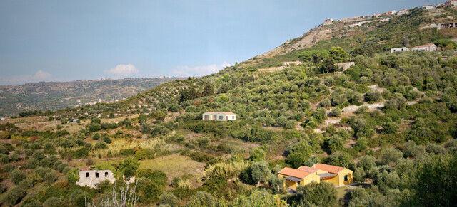 Bosa, terreno con uliveto e progetto casa rurale