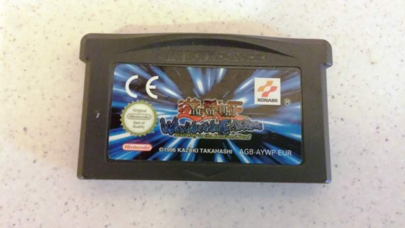 Videogiochi per pc e Game Boy Advance