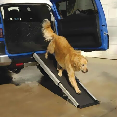Top 6 Dog Ramps For Cars