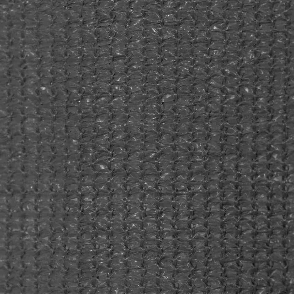 Tenda a Rullo per Esterni 400x230 cm Antracite 2