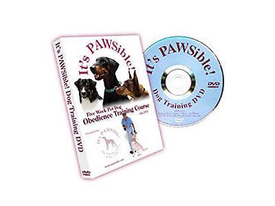 Dog Whisperer Dvd Box Set Uk