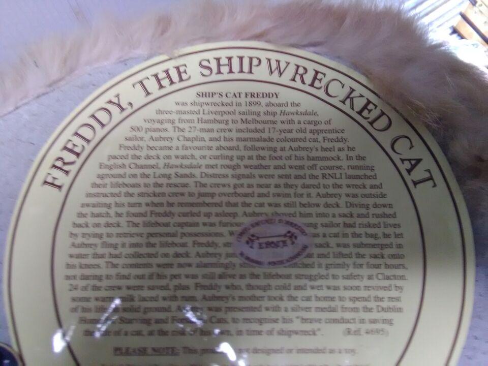 Freddy The Shipwrecked Cat della NAUTICALIA usato da collezione 5