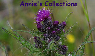 Annie's Collections and Cast Iron