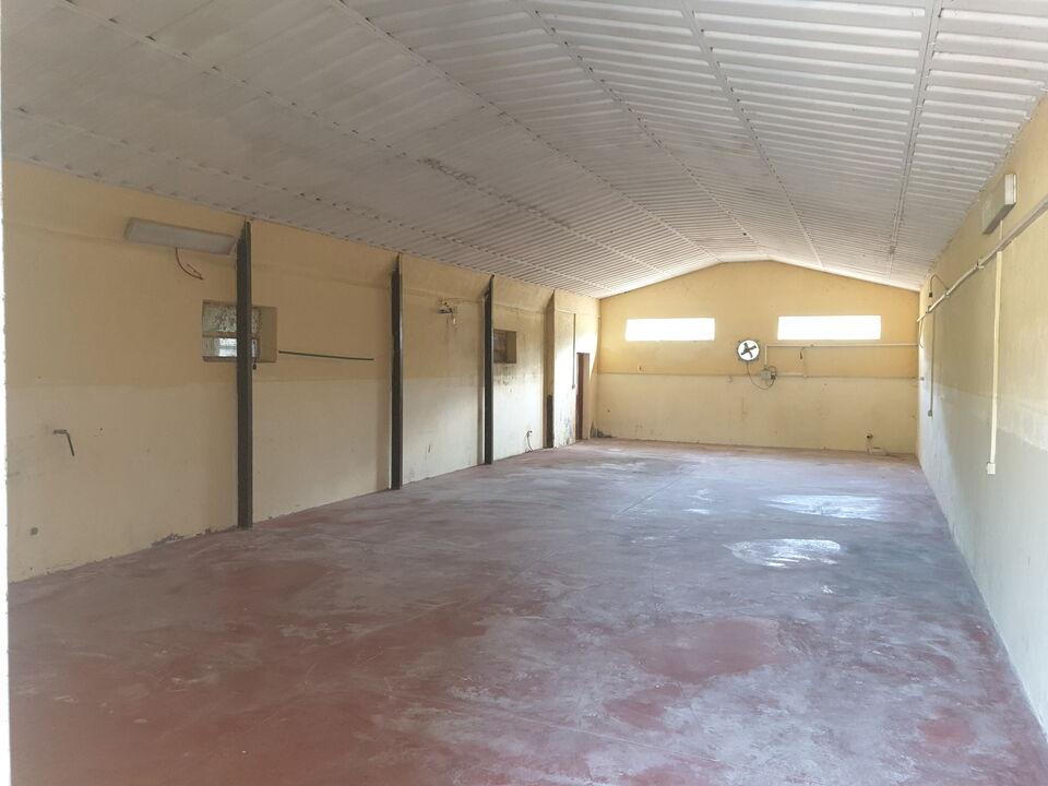 Capannone + uffici + piazzale + terreno...