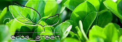erba_green