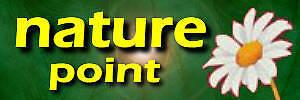 Moringa Nature Shop by NaturePoint