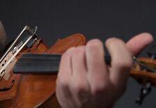 Violinista Ferrara e Comacchio