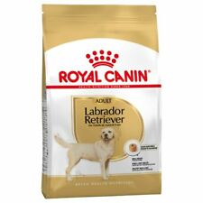 Labrador Retriever Adult Royal Canin 12 Kg