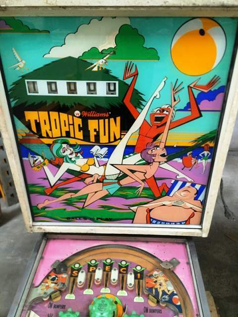 Flipper Williams mod. Tropic Fun del 1973