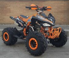 Quad monster 125cc r8 well nuovo