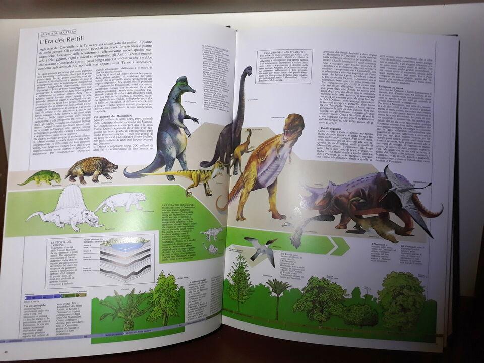 Nuova Enciclopedia Universale Minerva 7