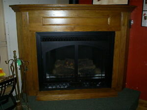 Direct vent gas fireplace ebay Decorative hearth