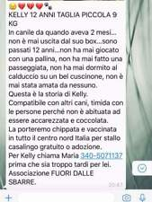 Piccola KELLY una intera vita di solitudine