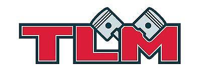 TLM-MotoGuzzi