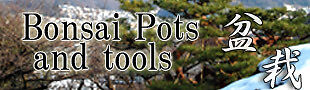 Japanese bonsai pots and tools