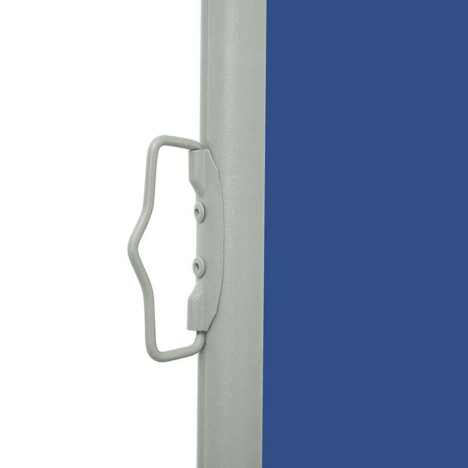 Tenda Laterale Retrattile per Patio 170x500 cm Blu 4