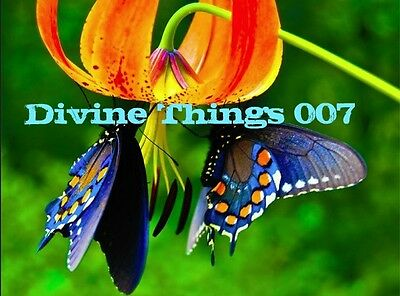 The Divine Things